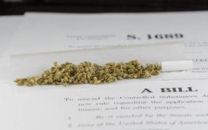 美国大麻合法化草案