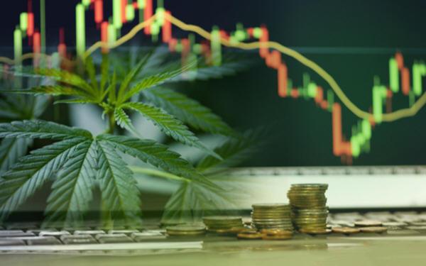 美国医用大麻市场