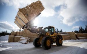 加拿大木材股