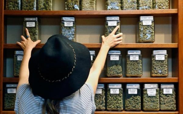 大麻零售商